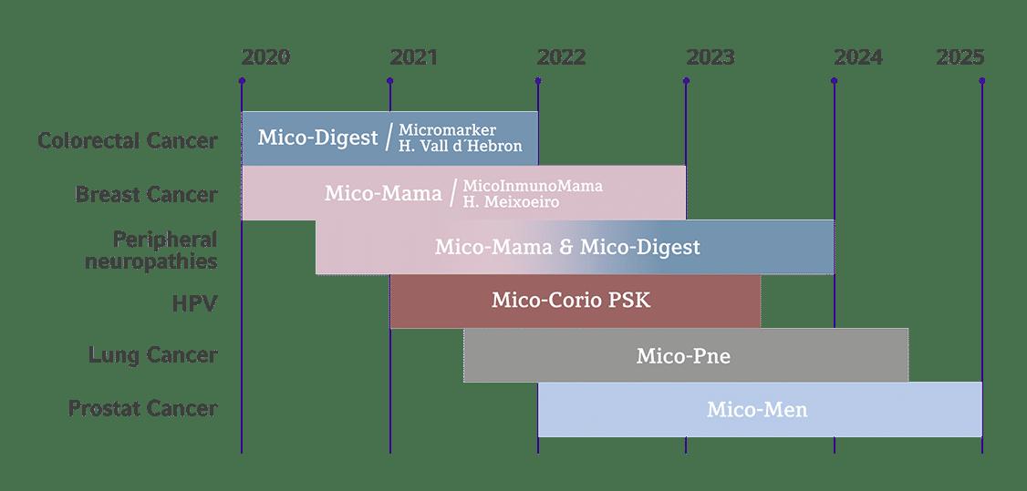 Pipeline Hifas da Terra 2020-2025