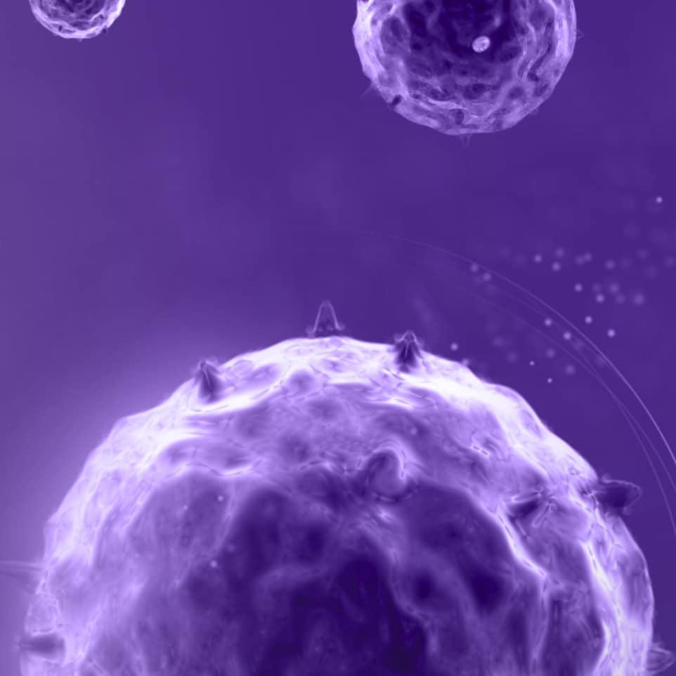 Header mobile Infection Virale